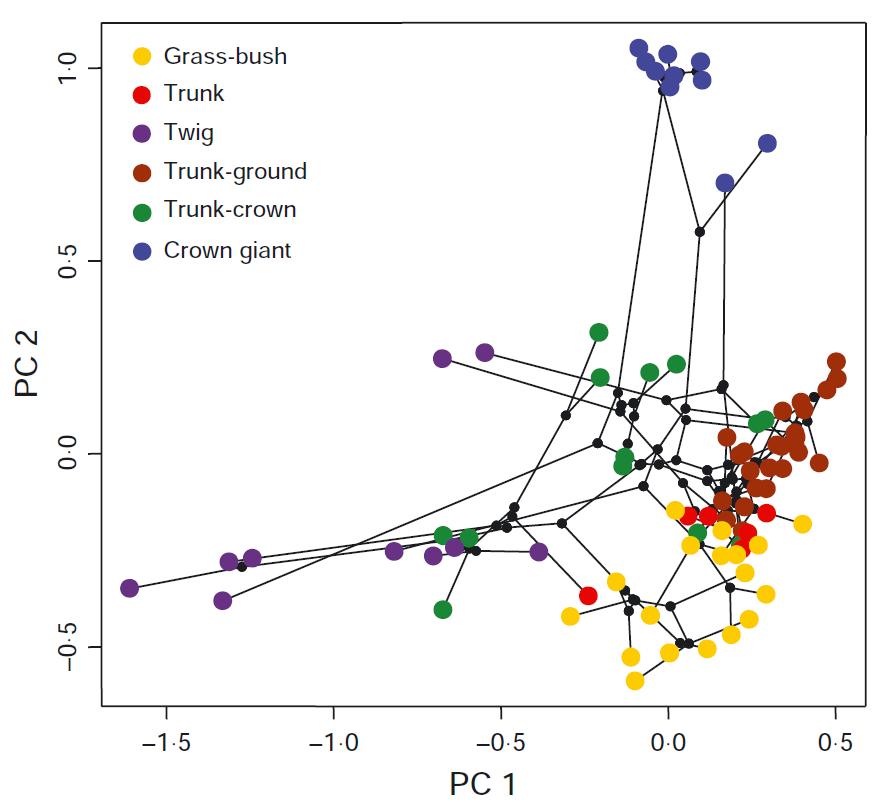 Phylogenetic Tools for Comparative Biology: Specifying node colors