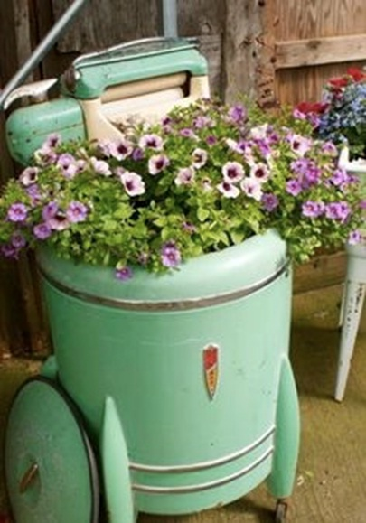Bekas drum mesin cuci jadi pot tanaman