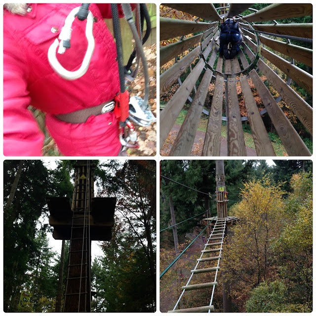 Go Ape Wyre Forest