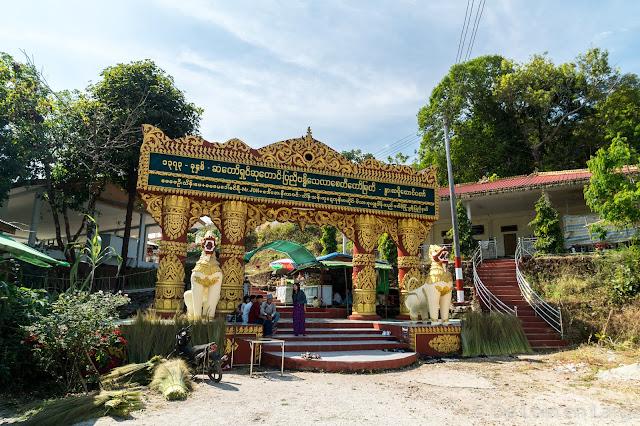Nwa la bo - Birmanie - Myanmar