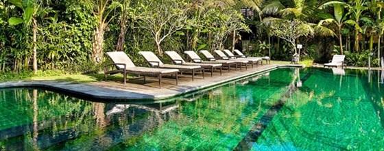 Hotel Pemandangan Sawah Di Bali