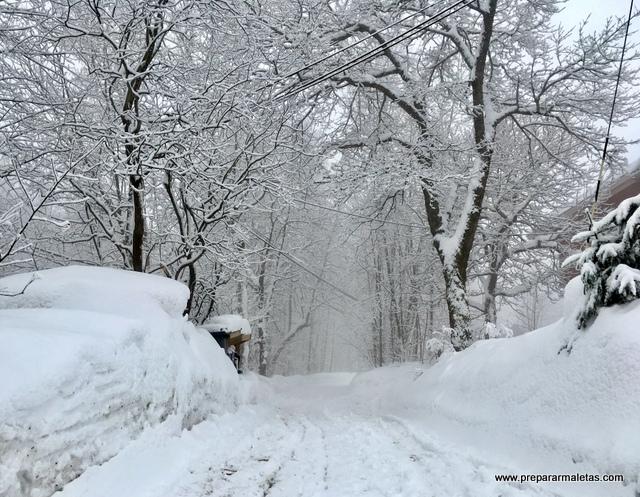 paisaje nevado en Oslo