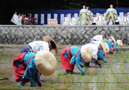 Taue Sai - Rice-planting Festival, at Fushimi Inari Taisha Shrine, Fushimi-ku, Kyoto