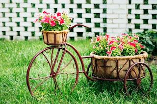 פרחים בסלסלה