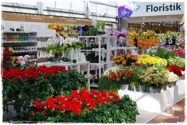 Gartenblog Topfgartenwelt Eröffnung Gartencenter Dehner Salzburg: Kunstblumen