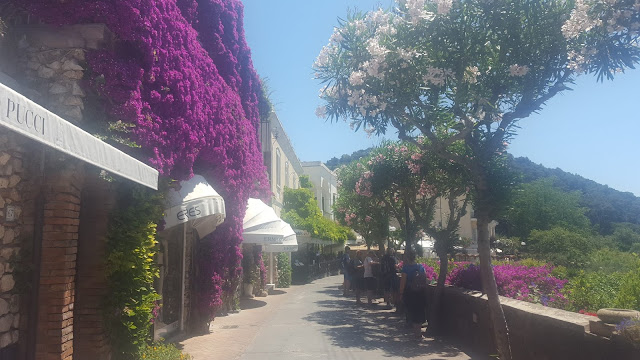 A neat row of designer shops with white canopies over each door that are contrasted by bright fuschia-coloured flowers. The bright blue sky accentuates the green leafy trees that cover the area and the pink and white flowers that grow on them.