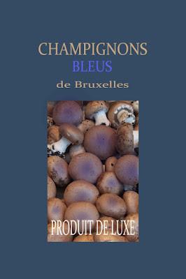 champignons bleus, étiquette, Yves Klein,