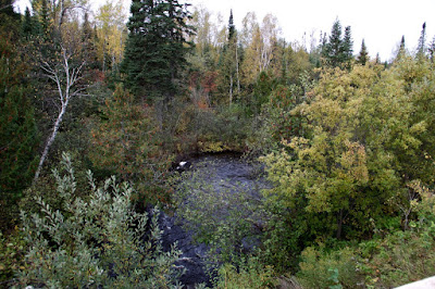 a trout stream in the North Country
