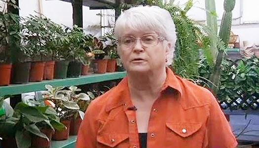 Florista cristiana se negó vender flores