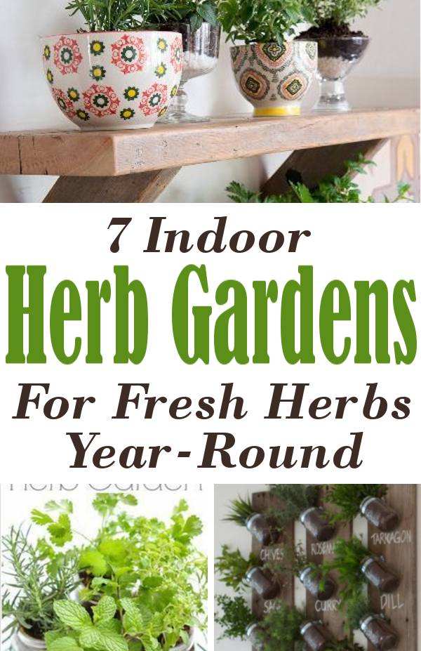 Diy home sweet home 7 indoor herb gardens for fresh herb year round 7 indoor herb gardens for fresh herb year round workwithnaturefo