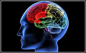 أسوء عشر عادات تدمر الدماغ .