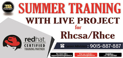 summer training with live project