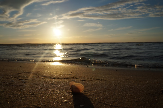Kocham morze!