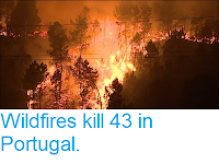 https://sciencythoughts.blogspot.com/2017/10/wildfires-kill-43-in-portugal.html