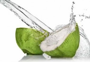 Kelapa ialah salah satu tumbuhan yg banyak dimanfaat buahnya 31 Manfaat Air Kelapa untuk Kesehatan, Kecantikan dan Ibu Hamil