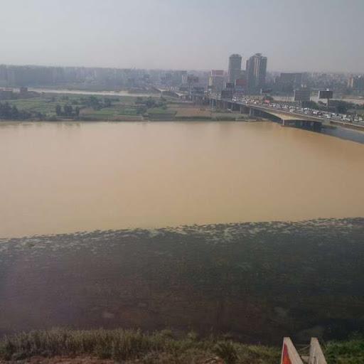 """شاهد بالصور- اللون الاصفر يغطي مياة النيل وخبير يُصرّح قائلاً """"بسبب السيول"""""""