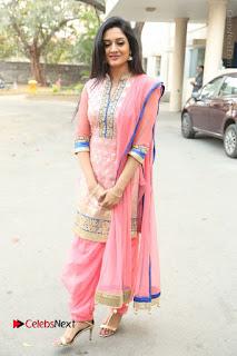 Actress Vimala Raman Stills in Beautiful Pink Salwar Kameez at (ONV) Om Namo Venkatesaya Press Meet  0245.JPG