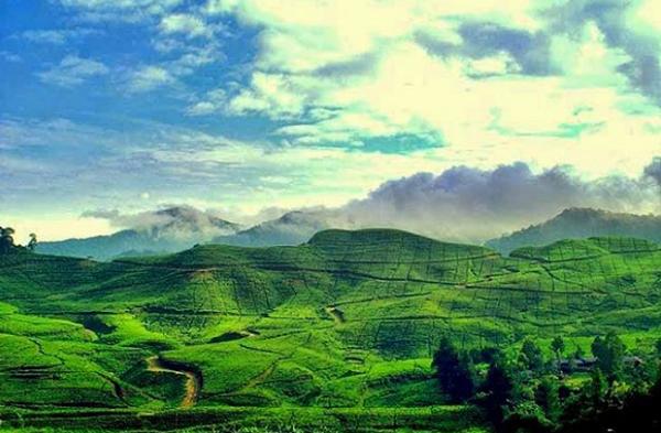 Wisata Alam Taman Riung Gunung Bogor
