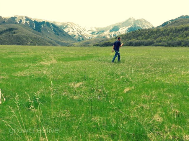 Provo Canyon Meadow
