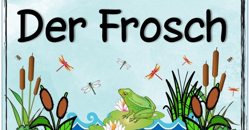 Ideenreise themenplakat der frosch - Frosch englisch ...