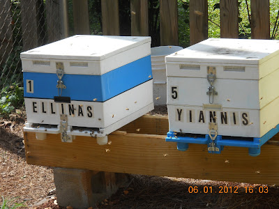 Έλληνες μετανάστες... Μελισσοκόμοι!!!