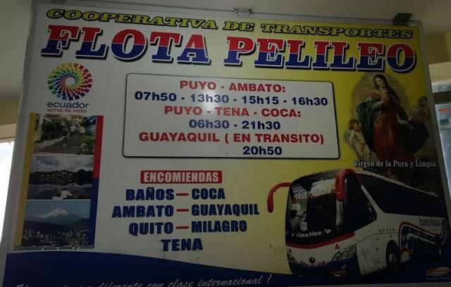 Cooperativa de Transportes Flota Pelileo en la ciudad de Puyo