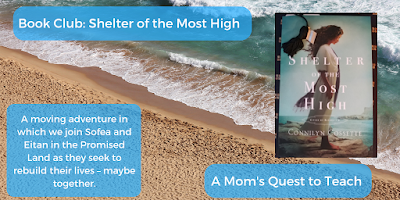 Book Club: Shelter of the Most High; A Moving adventure in which we join Sofea and Eitan in the Promised Land as they seek to rebuild their lives - maybe together. cover of Shelter of the Most High; background image of beach