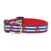 Dog collars xl