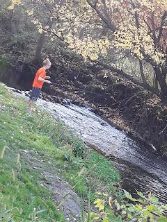 Stream behind campground, Highlandville Iowa