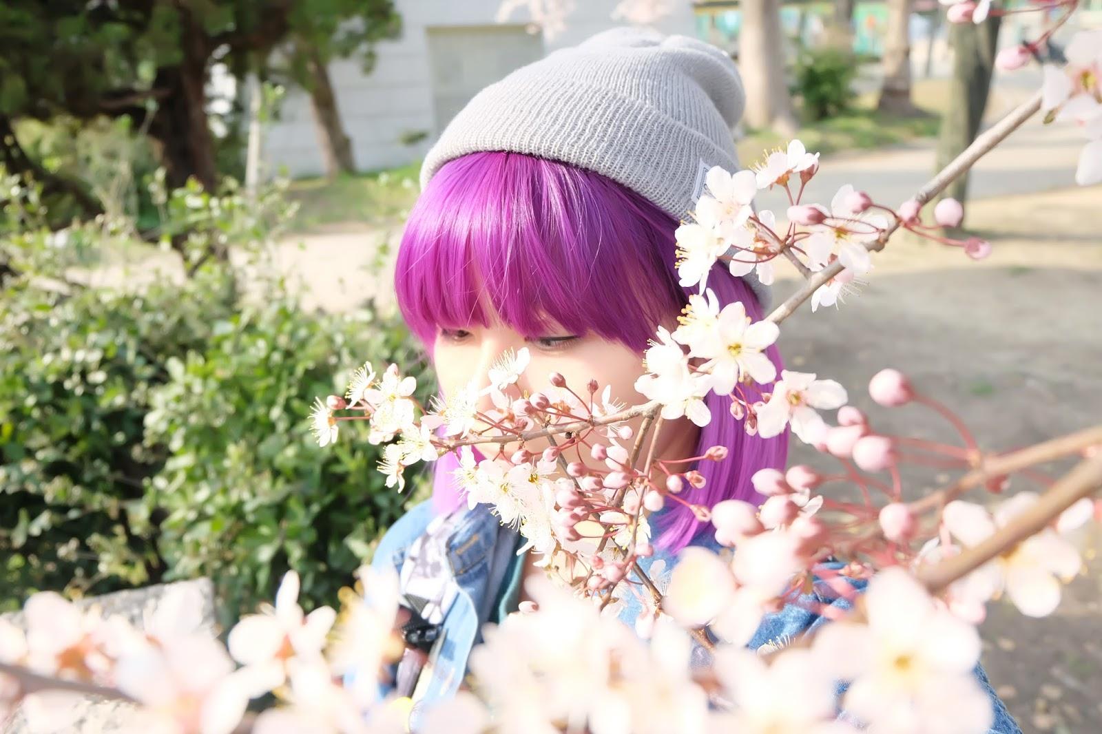 Japan 14 days itinerary | www.bigdreamerblog.com