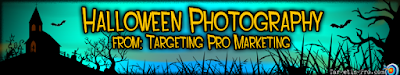 Holiday Photography - Targeting Pro Marketing