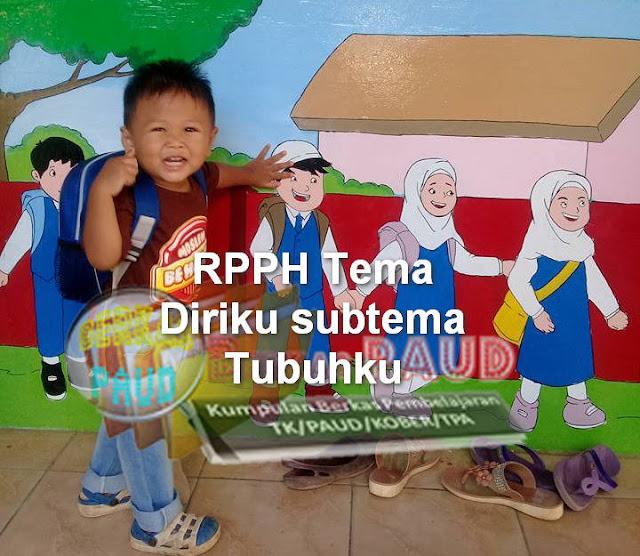 RPPH K-13 PAUD 5M TEMA DIRIKU SUBTEMA TUBUHKU SEMESTER 1 Usia 5-6 tahun