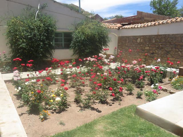 Rosengarten in EL Molino bei Potosi