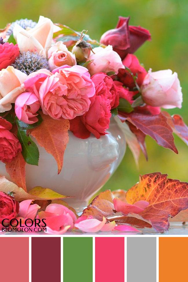 paletas_de_colores_variedad_de_temporada_2