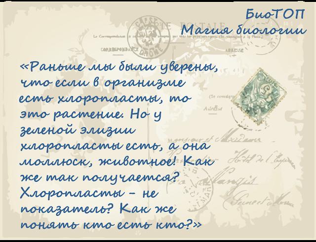 chem-otlichayutsya-rasteniya-ot-drugih-organizmov-magiya-biologii