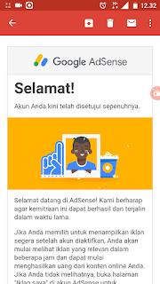 Pengalaman pertama di terima oleh google adsense