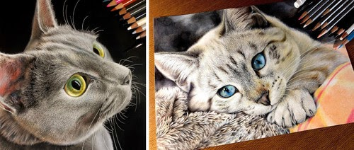 00-Yuki-Kudo-Cat-Drawings-www-designstack-co
