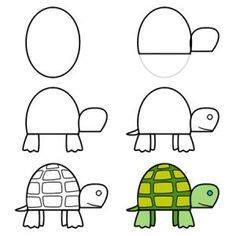 Learn to draw a turtle for kids