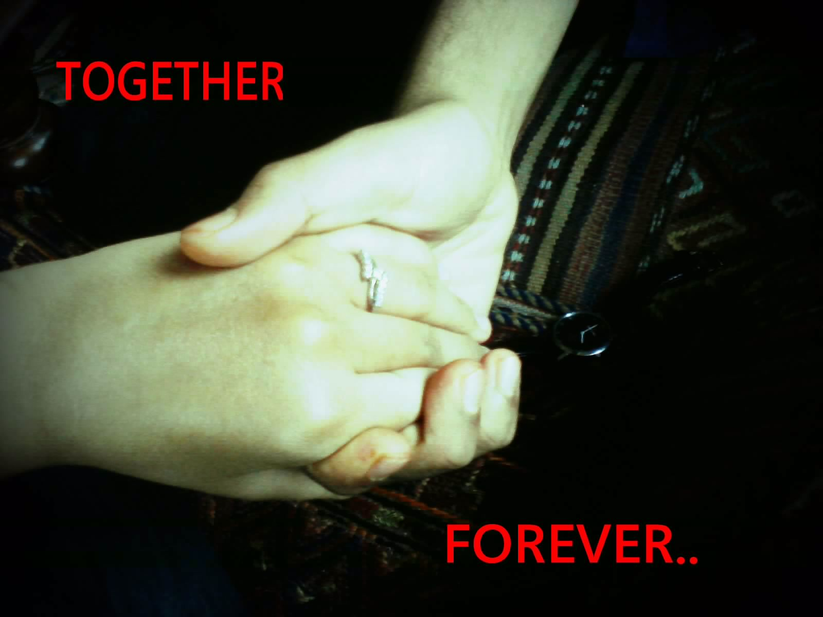 Zaid Rinku Together Forever 2012