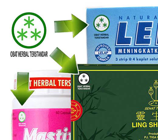 Obat asam urat dari herbal terstandar