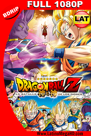 Dragon Ball Z: La Batalla de los Dioses (2013) Latino FULL HD BDRIP 1080P ()