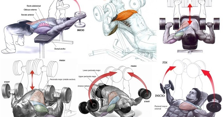 how to make triceps at home with dumbbells