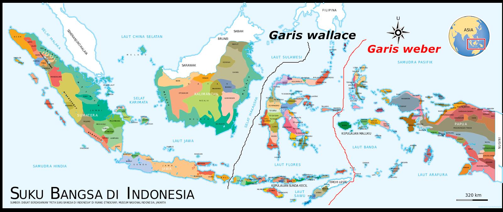 Pembagian Persebaran Fauna Di Indonesia  Materi Belajar