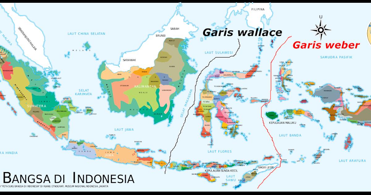 Pembagian Persebaran Fauna Di Indonesia - Materi Belajar