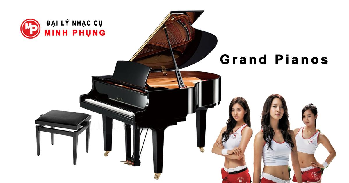 Bán Piano Yamaha Giá Hợp Lý , Hỗ Trợ Nâng Cấp Sau 3 Năm Dùng