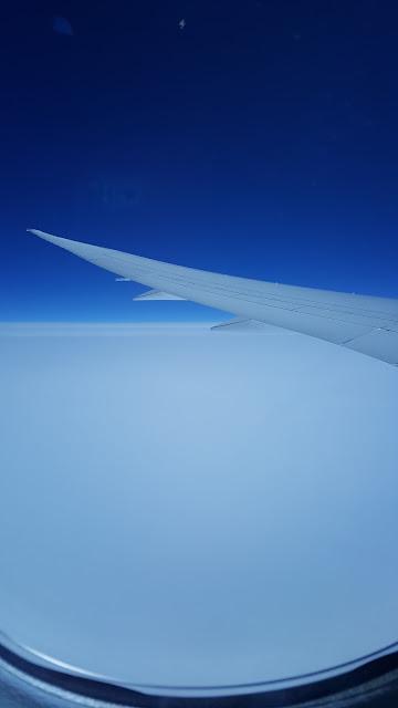 plane-wing