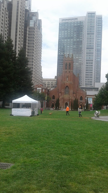 The Saint Patrick's Church seen from the Yerba Buena Gardens