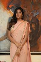 Eesha Rebba in beautiful peach saree at Darshakudu pre release ~  Exclusive Celebrities Galleries 047.JPG