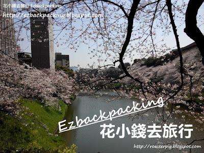 2019 일본 벚꽃 개화시기