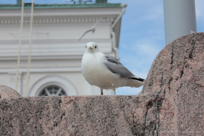 Helsinki | Travel - www.josieslittlewonderland.de - reisefieber, travel, josie unterwegs, finnlineshelsinki, städtetrip, northeurope, skandinavia, kurzreise, sightseeing helsinki, senatsplatz, helsinki city